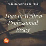 how-to-write-a-professional-essay